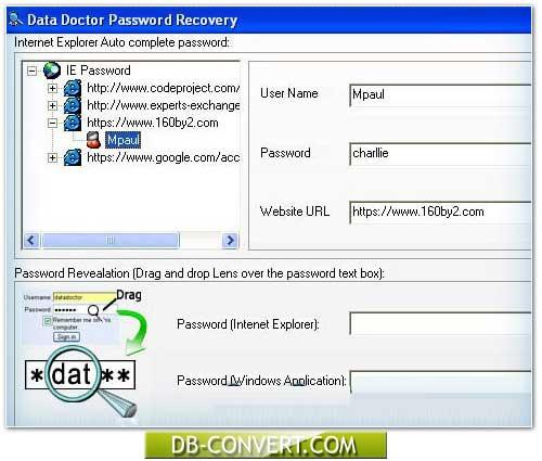 IE Passwords Unmask Software